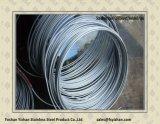 Bobinas de acero inoxidable tubo para el intercambio de calefacción