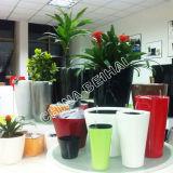 Vasos de plantas coloridas piscina decorativa Vasos