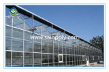 Закаленное изолированный стеклянными панелями парниковых