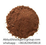 Preto orgânico de alta qualidade o alho em pó