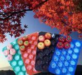 Obst- und GemüseWegwerfplastik pp., der Tellersegmente verpackt