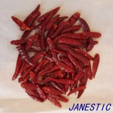 Getrockneter roter Chaotian Paprika von Tianying 8
