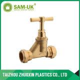 Шариковый клапан Китая PPR (B17)