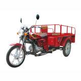 Tricycle/Three Rad-Motorrad (SP110-ZH)