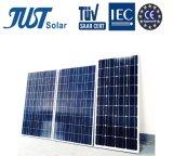 Poli comitato solare verde di energia 170W con il prezzo inferiore