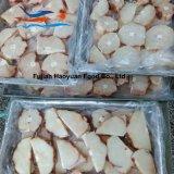 競争のフリーズされた魚のヨシキリザメのステーキ