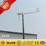 Turbine-/Wind-Energien-Generator des Wind-3kw für Hauptgebrauch (3000W)