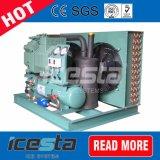A unidade do compressor de refrigeração de ar resfriado