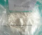 99.5% grand Benzocaine standard de la pureté USP avec le prix usine