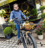 Classic/Retro/Vintage 250W/500W/750W Bicicleta eléctrica FAT/FAT Bicicleta eléctrica de los neumáticos de nieve/eléctrica bicicleta Bicicleta grasos/E/E/Bicicleta Arena Beach Cruiser Pedelec Fat