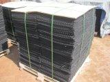ケージか水産養殖のカキのネットのケージを耕作している水産養殖のカキ