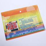 Sostenedor del fichero de papel de las fuentes de oficina de la alta calidad (bolso plástico del fichero)