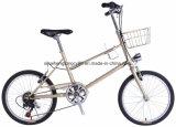 Bike города CT20nt210 20inch стальной с 6 скоростями