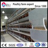 Цыпленок слой отсека для аккумулятора/птицы системы отсека для жестких дисков