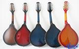 Mandolin Maa001 цветов китайской фабрики Aiersi по-разному