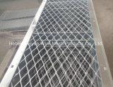 Réseau de plaque d'acier inoxydable pour la protection de route