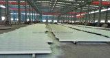 De pre-gebouwde Bundel van het Dakwerk van het Metaal voor de Bouw Gumnasium