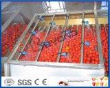 トマトのりの加工ライン