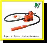 Type vibrateur concret 1.4kw/220V de la Russie