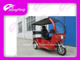 110cc Disabled Tricycle mit Passenger Seat