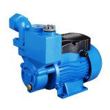 Série Dbz da bomba eléctrica de água limpa