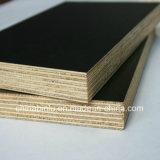 De madera contrachapada de forma concreta/película de plástico impermeable frente el contrachapado para la construcción/encofrados de madera contrachapada de