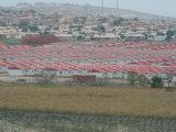 2000 مجموعة [لوو كست] يصنع منزل إلى أنغولا