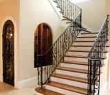 Pasamanos de acero revestidos de la barandilla y de la escalera del polvo ornamental con alta calidad