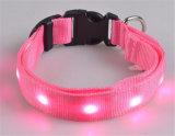 Coleira de LED