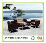 金属の足によってセットされる屋外の家具の藤の庭のソファー