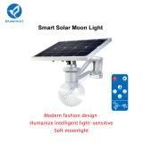 Illuminazione alimentata solare esterna del giardino del LED con il comitato solare registrabile