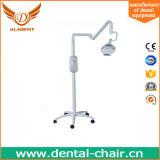 単位を白くする装飾的な歯科装置の歯