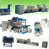 Máquina de fabricación de placa disponible del alimento de la espuma del picosegundo