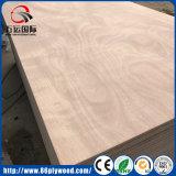 Contre-plaqué chaud de faisceau de peuplier de placage d'Okoume de vente de constructeur de Linyi