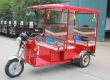 The Factory Indian Electric Tricycle for Passenger
