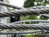 Câble de corde de fils en acier galvanisé 6 x 36 Iwrc