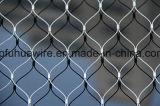 Rete fissa animale della rete metallica del giardino zoologico