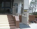 elevatore della piattaforma 250kg per Handicapped