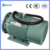 Low Price LG Series Screw Compressor Trifásico Asynchrouous Motor