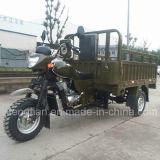 Transportation를 위한 2016 새로운 Gasoline 3 Wheeled Trike