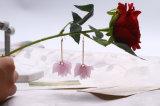 잎 펀던트 최신 판매 Earings를 가진 최신 디자인 귀걸이