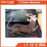 Marke 3 Jahre Garantie-Laser-Ausschnitt-Stahlmaschinen-für Verkauf