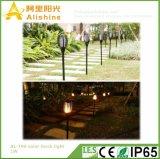 luz solar de la antorcha de la viruta de 1W 96PCS LED con la función ligera de Contorl