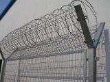 Cow Fencing Mild Steel Barbed Wire