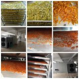 Óleos vegetais e frutas frescas Slice Mango máquina de secagem do secador