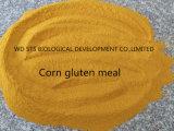 La farine de gluten de maïs comme la poudre de protéine pour l'alimentation animale
