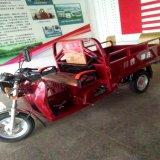 150/200のCcのガソリンエンジンが付いている3つの車輪の電気ハイブリッド車