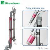 Nd: YAG medizinischer Laser-Haut-Sorgfalt-Systems-Pigment-Abbau
