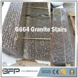 Granit chinois économique G602 / G687 / G664 / G654 / G383 pour escalier / Step / Step & Riser / Pieds roulants
