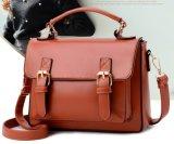 Signora classica Handbag (WDL0171) di vendita della signora Handbag Women Bag Hot